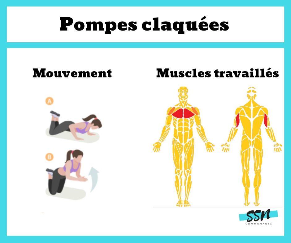 Exercices triceps des pompes claquées en musculation