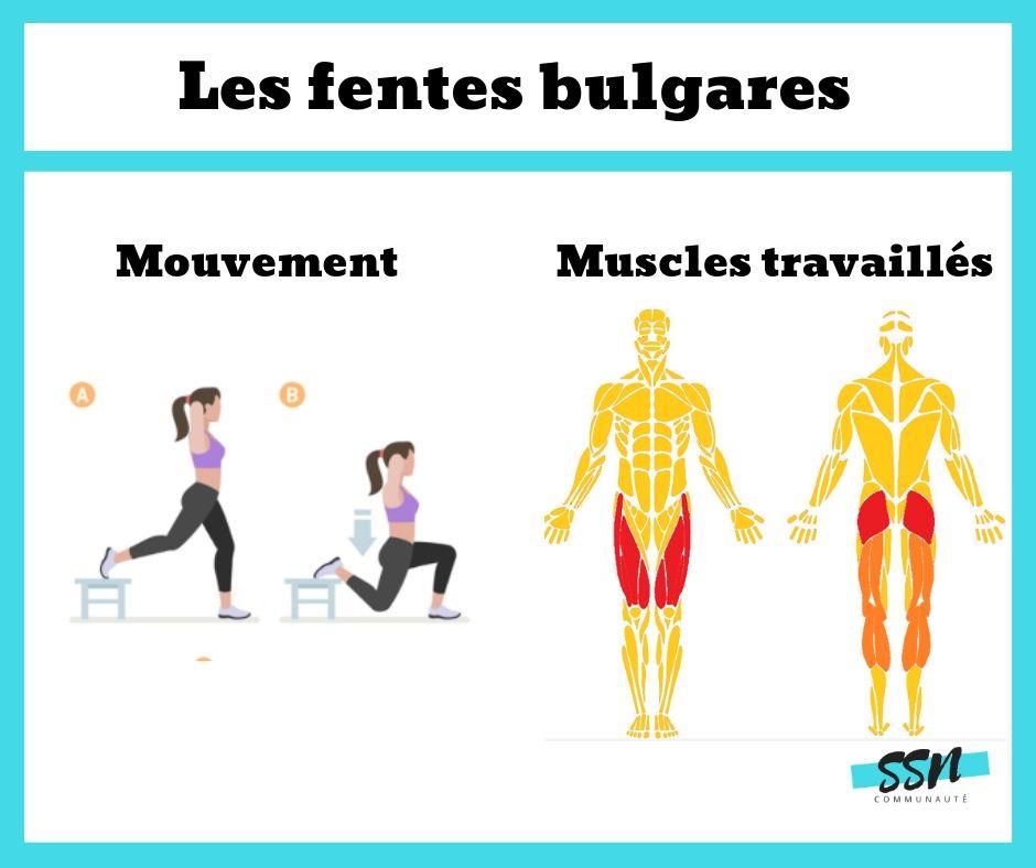 Exercice fessiers/cuisses des fentes bulgares en musculation