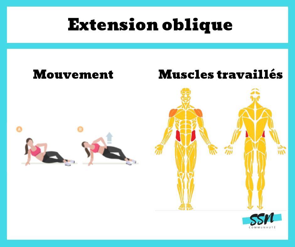 Exercice abdominaux / taille les extensions oblique en musculation
